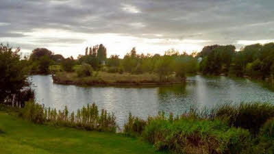 Oak Tree Fishery, DN9 2NQ