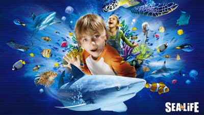 Offer image for: Sea Life Great Yarmouth - Up to 41% discount - Pre-booking required