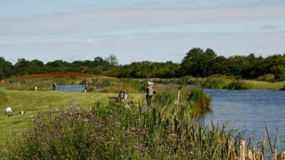 Offer image for: Thornwood Springs Trout Fishery - One child fishes free with one full paying adult.