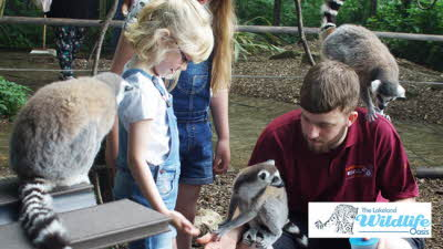 Offer image for: The Lakeland Wildlife Oasis - One free child when accompanied by one full paying adult.