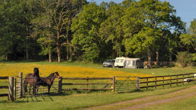Randalls Farm, BH24 4HJ, Ringwood, Hampshire