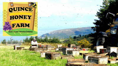 Offer image for: Quince Honey Farm - 25% discount on entry.