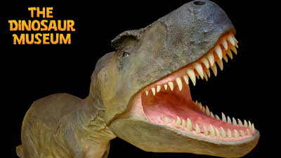 Offer image for: Dinosaur Museum - Two for the price of one.