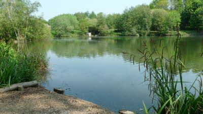 Offer image for: Seven Lakes Fishery - Two free children when accompanied by one full paying adult.