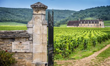Wines of Burgundy Tour